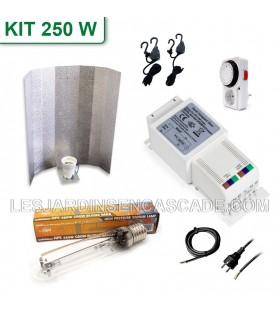Kit HPS 250W Compact Gear +...