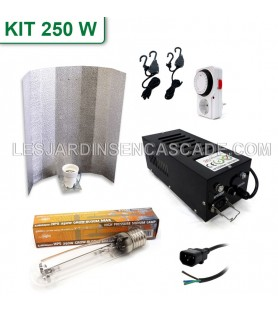 Kit HPS 250W IP20 + Stucco