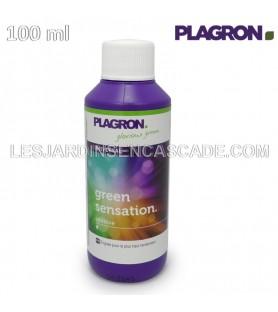Green Sensation 100ml PLAGRON