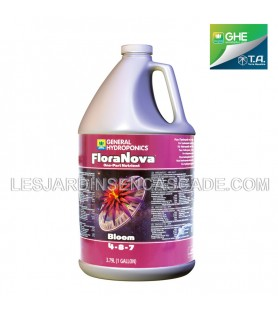 Nova Bloom 3.79L - GHE...