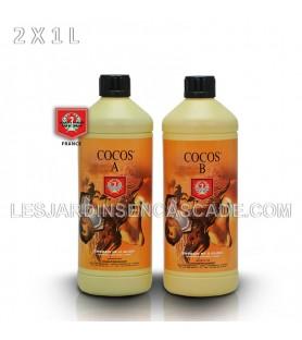 H&G Coco A+B 2x1L