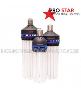 Ampoule CFL 125W Croissance...