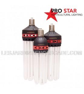 Ampoule CFL 300W Floraison...